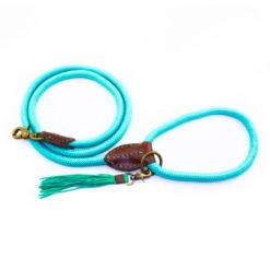 DWAM-Turquoise